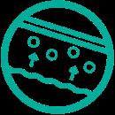 icon_bacteria